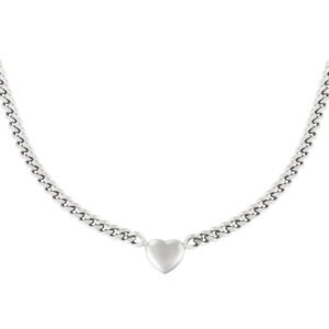 Ketting Chained Heart Stainless steel - Zilver kleur.